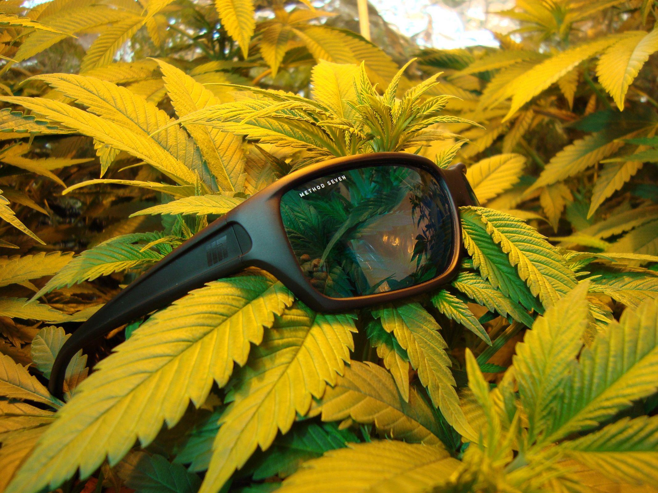 Method seven hps indoor gardening glasses method seven for Indoor gardening glasses