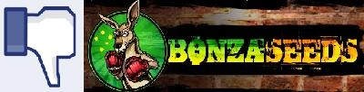 resized bonza